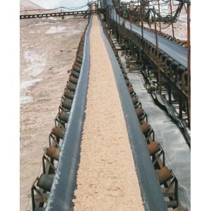 Salt treatment belt conveyor